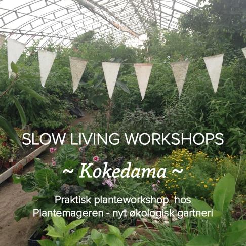 slowlivingworkshop_grafik_plantemageren-2
